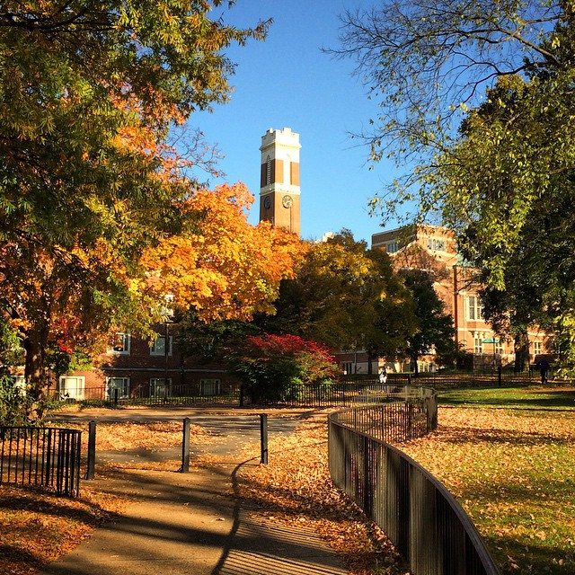 Vanderbilt Fall Colors