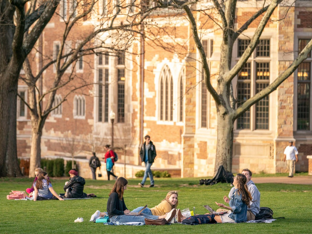 students sitting on alumni lawn