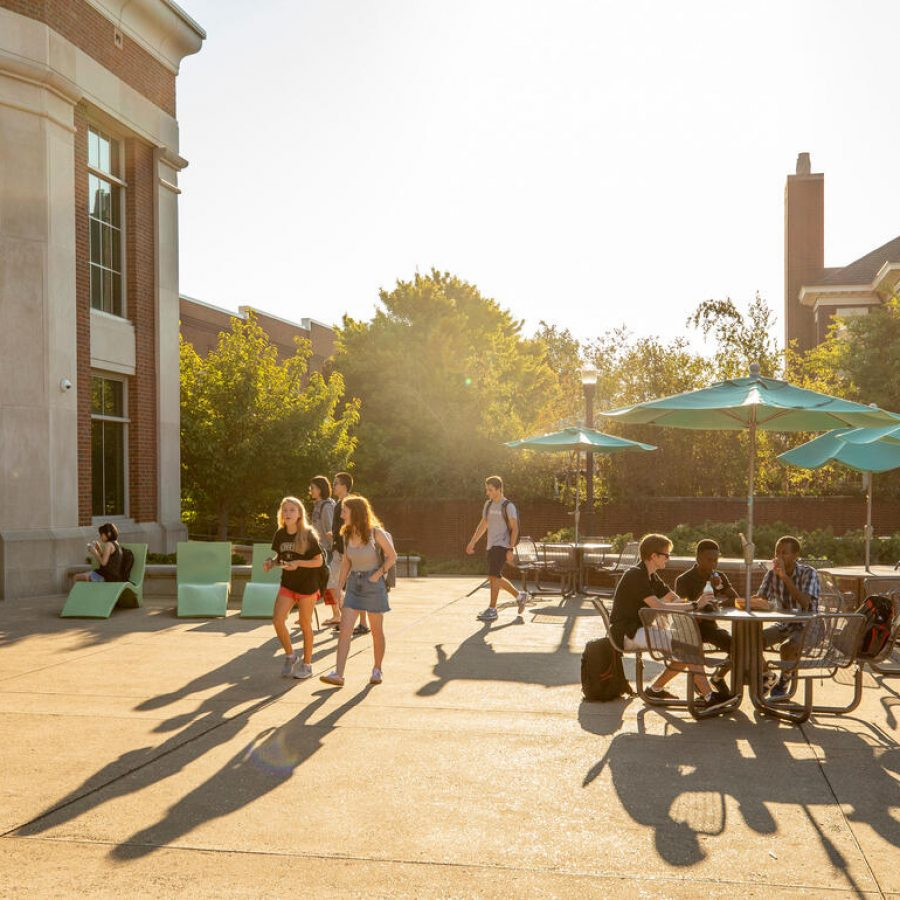 Students on the commons
